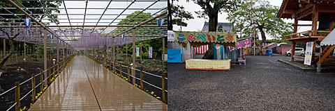 Fujimatsuri_2007
