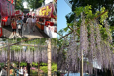 Fujimatsuri_2008